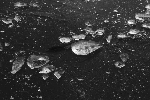 Ice-covered surface of frozen lake, close-up - JTF01167