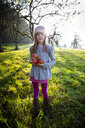 Portrait of smiling girl standing on a meadow with collected apples in autumn - LVF07692