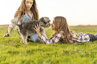 Two girls playing with dog on a meadow - ERRF00685