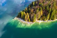 Germany, Upper Bavaria, Lake Walchen, Aerial view of Sassau Island - AMF06753
