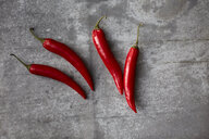 Red chili peppers on gray background - KSWF02016