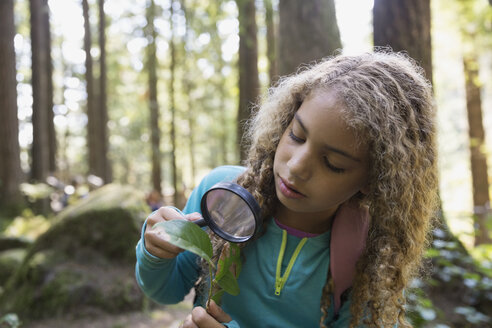 Girl with magnifying glass examining plant leaf - HEROF09657