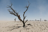 Namibia, Way to Sossusvlei, woman sitting in dead tree in the desert - LHPF00446