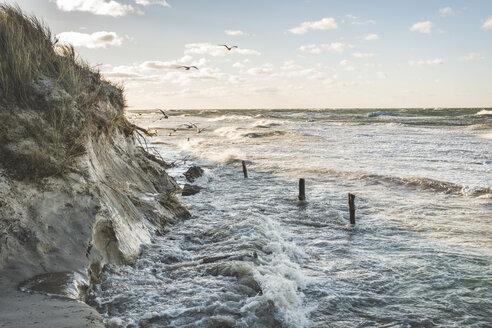 Germany, Mecklenburg-Western Pomerania, Darss, Baltic Sea at storm - KEBF01049