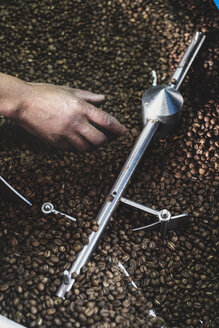 High angle close up of person checking freshly roasted coffee beans in coffee roaster. - MINF10311