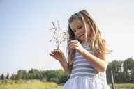 Curious girl holding wheat stalk in sunny, rural field - HEROF10758