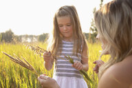 Mother and curious daughter looking at wheat stalk in sunny, rural field - HEROF10767