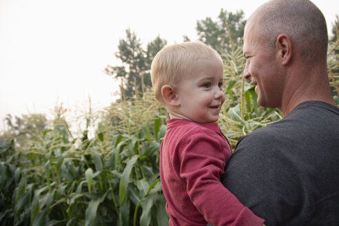 Father holding toddler son in rural corn field - HEROF10791
