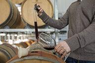 Winemaker checking wine in barrels at vineyard - HEROF11256