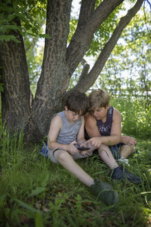 Brothers using smart phone under tree - HEROF11325