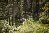 Affectionate mature couple hiking, kissing on sunny forest trail - HEROF11442