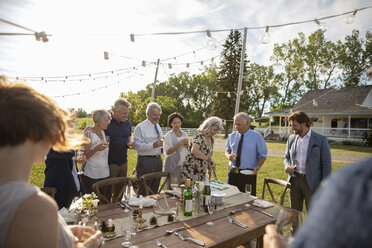 Friends celebrating anniversary party, cutting cake in sunny rural garden - HEROF11790