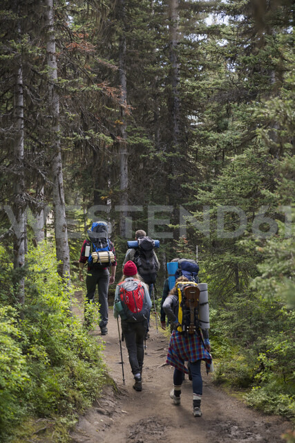 Friends hiking with backpacks and hiking poles on remote trail in woods - HEROF12357 - Hero Images/Westend61