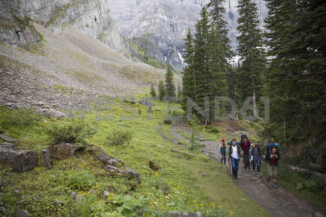 Friends hiking on trail in remote woods - HEROF12375