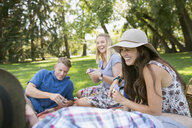 Laughing couples playing cards in summer park - HEROF12423