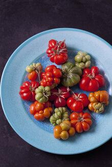 Tomaten, Sorte Reisetomaten, Tomaten (Solanum lycopersicum), Cherry-Tomaten, rot, grün, blauer Teller,kurios, ausgefallene Form, mehrteilig, Tomate für Unterwegs, teilbar,  dunkler Untergrund - CSF29220