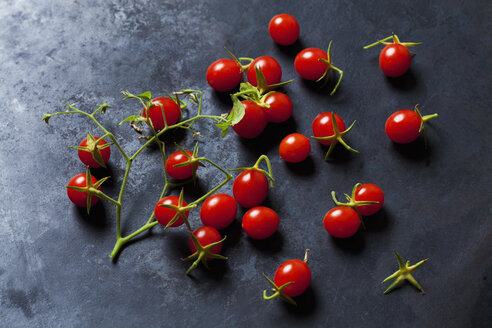 Currant tomatoes on dark ground - CSF29232