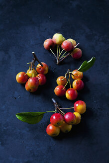 Red crab apples - CSF29295