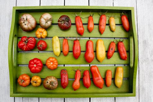 Holztablett mit verschiedenen Tomatensorten, Reifegrade, überreif,reif, faul, schimmelig,Green Zebra  Tomaten,  San Marzano Tomaten, Azoychka Tomaten, Reisetomaten, Ochsenherztomaten,  ACE-55 Tomaten, grün, heller Holzuntergrund, Holztisch - CSF29307