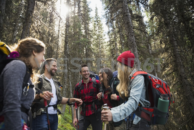 Smiling friends hiking with backpacks and hiking poles in woods - HEROF13642 - Hero Images/Westend61