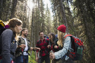 Smiling friends hiking with backpacks and hiking poles in woods - HEROF13642