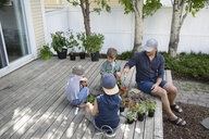 Father and sons potting plants on deck - HEROF14413