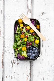 Tofu-Salat (gemischter grüner Salat mit Rotkohl, Granatapfelkernen und in Kurkuma geröstetem Tofu) als Meal Prep/Lunchbox mit Heidelbeeren - LVF07741