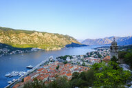 Montenegro, Bay of Kotor, Kotor, old town, church Gospa od Zdravlja - SIEF08412