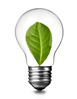 Close up of a light bulb with green leave on white background, sustainability concept - RAMF00079
