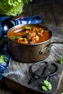 Goulash soup and a pot of parsley - SBDF03890