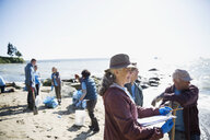 Beach cleanup volunteers picking up litter on sunny beach - HEROF17499