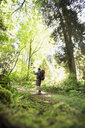 Man hiking using digital tablet camera on path in woods - HEROF18817