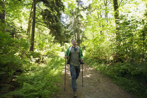 Man hiking with hiking poles on path in woods - HEROF18820