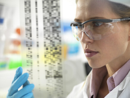 Scientist examining the results on a DNA autoradiogram in the laboratory - ABRF00315