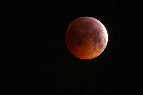 Germany, Hessen, Frankfurt am Main, total lunar eclipse of January 21, 2019  at 4:34 h UTC - THGF00076