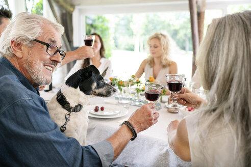 Senior couple clinking wine glasses on a family celebration - PESF01274
