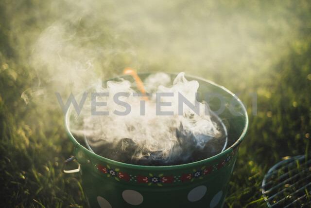 Smoking grill on a meadow - JSCF00122 - Jonathan Schöps/Westend61