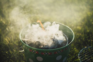 Smoking grill on a meadow - JSCF00122