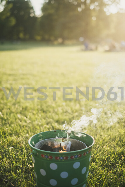 Barbecueing on a meadow - JSCF00125