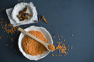 Red lentils and chili pods in bowls - ASF06295
