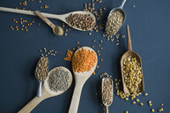 Red lentils, brown lentils, amarant, wheat, spelt wheat and corn on spoons - ASF06298