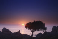 Spain, Cala S'Alguer, Costa Brava, sunset at the coast - DSGF01806
