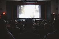 People watching movie in dark movie theater - HEROF19912
