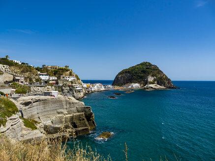 Italy, Campania, Ischia, Forio, - AMF06774