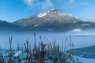 Winter landscape with mist over Spitzingsee, Bavaria, Germany - CUF48671