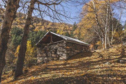 Georgia, Greater Caucasus, Stepantsminda, small forest church - KEBF01118