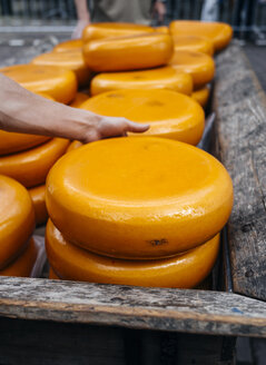 Loaves of Gouda cheese at market - PPXF00148