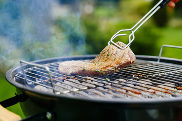 Grilling lamb fillet on charcoal grill - PPXF00169