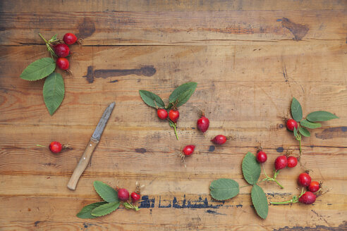 Roseships and kitchen knife on wood - GWF05864