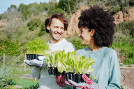 Happy couple carrying lettuce seedlings to their vegetable garden - GEMF02696